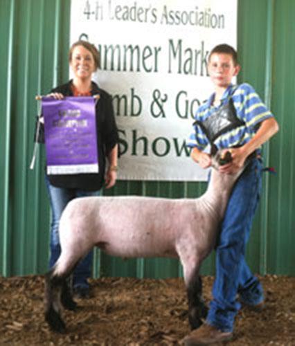 Champion Market Lamb 2012 Clarke County Jackpot Show