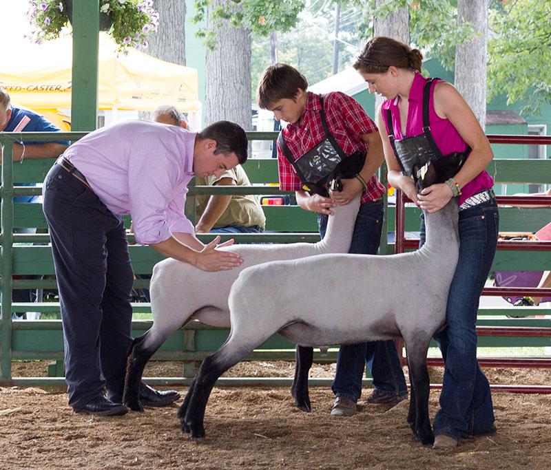 2012 Clarke County Fair
