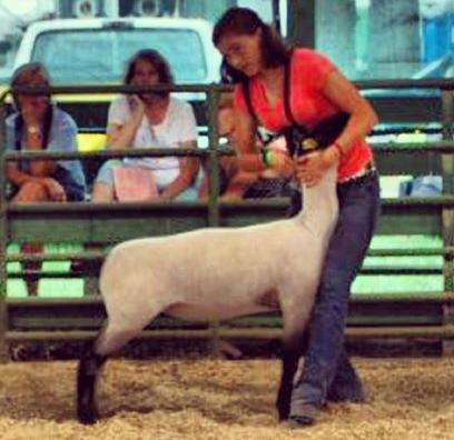 122lb Lamb (Shroyer x Slack)