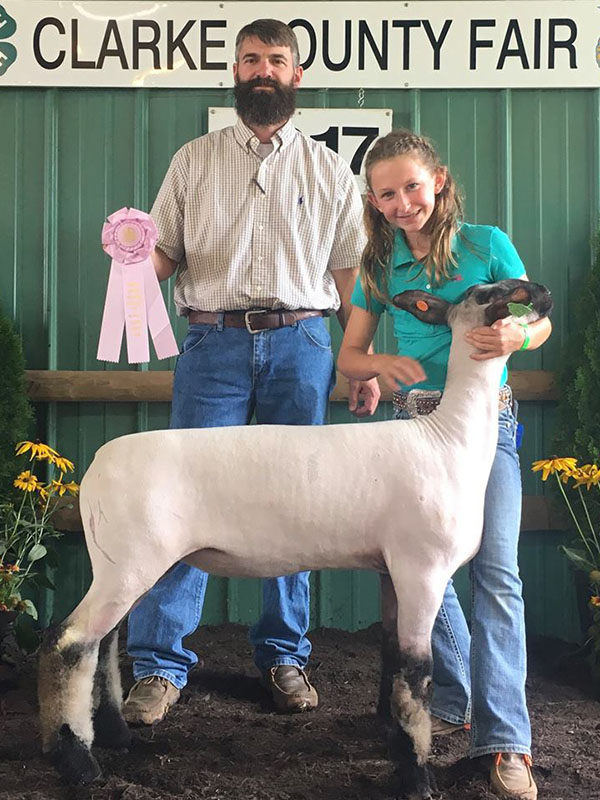 2017 Clarke County Sheep Show & Market Lamb Show Results