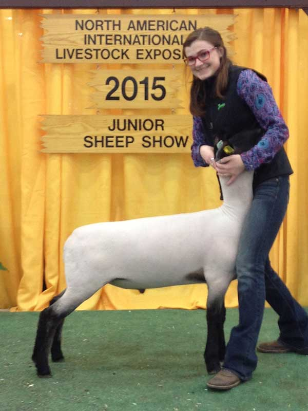 2015 NAILE Market Wether Show Winners