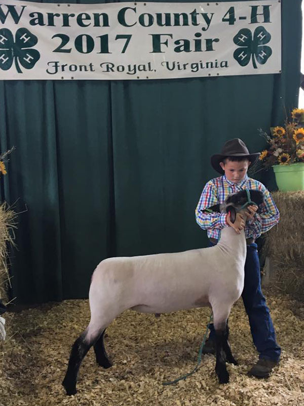 2017 Warren County Sheep Show & Market Lamb Show Results
