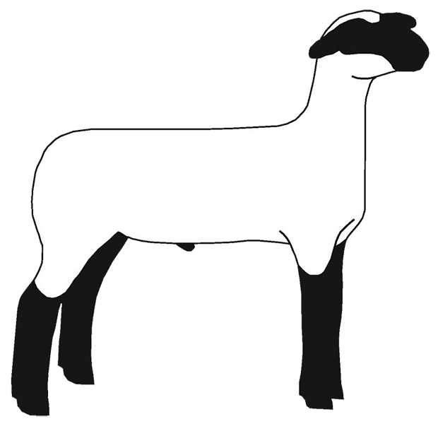 free show lamb clip art sheep graphics clublamb images rh clublambs com clip art lamb and cross clip art lamb of god