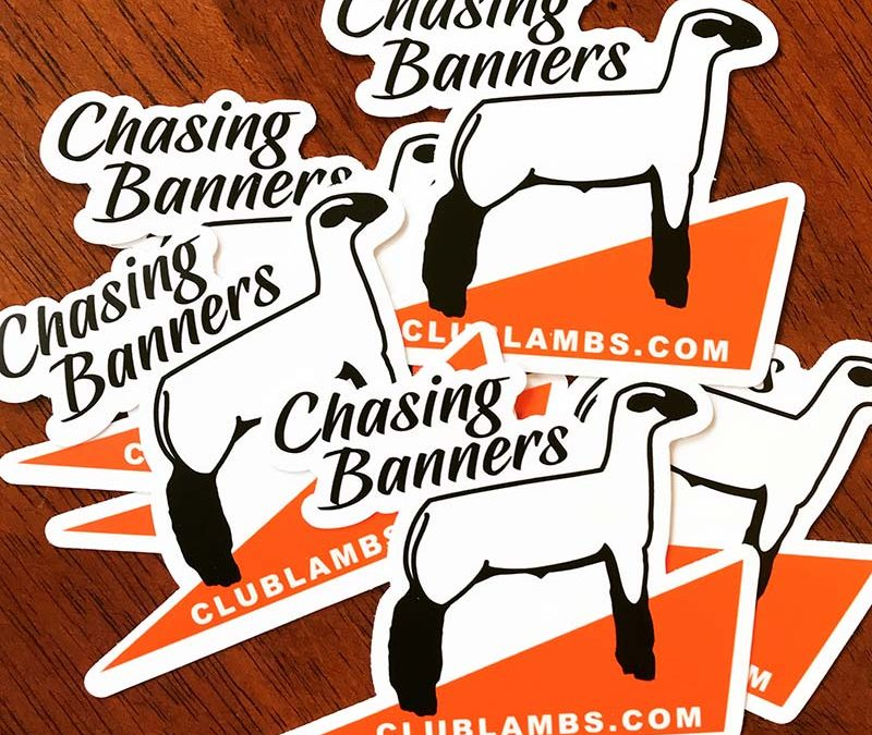 Show Lamb Stickers For Sale