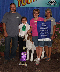 Grand Champion Marketing Goat For Sale