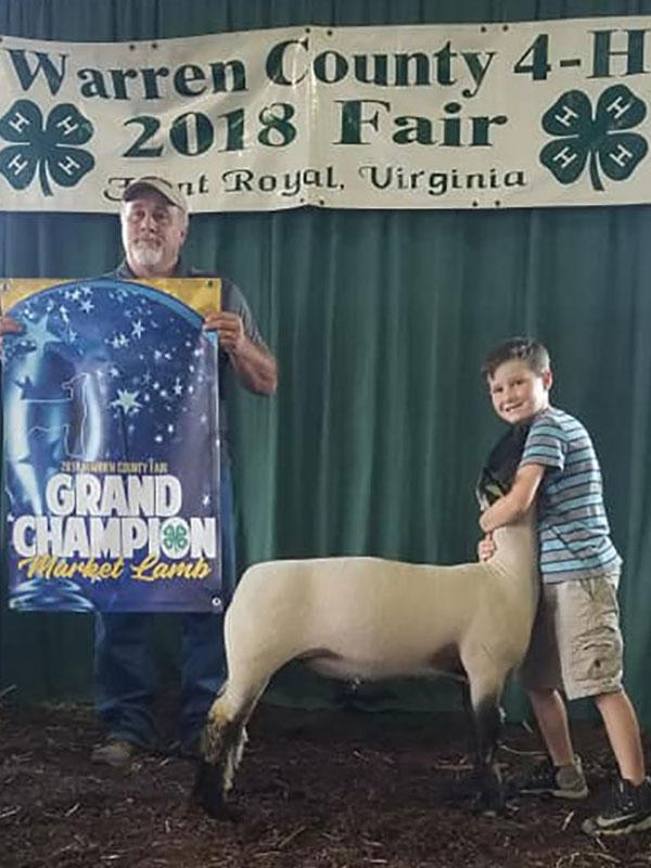 2017 NAILE Market Lamb Show Results